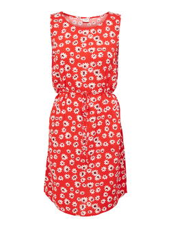 JDY Valiant Poppy Flower Starr Life Belt Dress